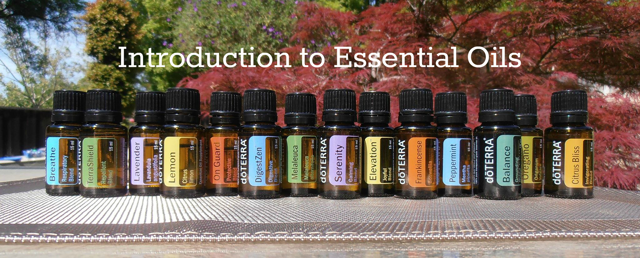 Essential oils events photo